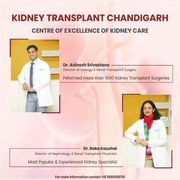 Which is the Best nephrologist Specialist Mohali Punjab?